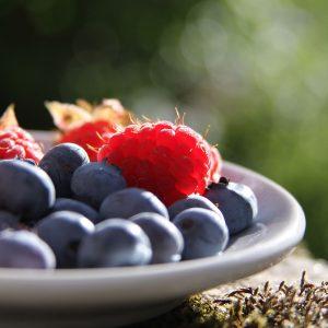 Berry 03